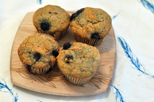 Babycakes blueberry muffins